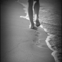 Empezamos a caminar….