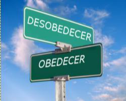 Delito desobediencia